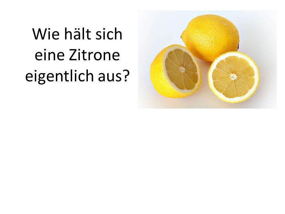 Wie hält sich eine Zitrone eigentlich aus?