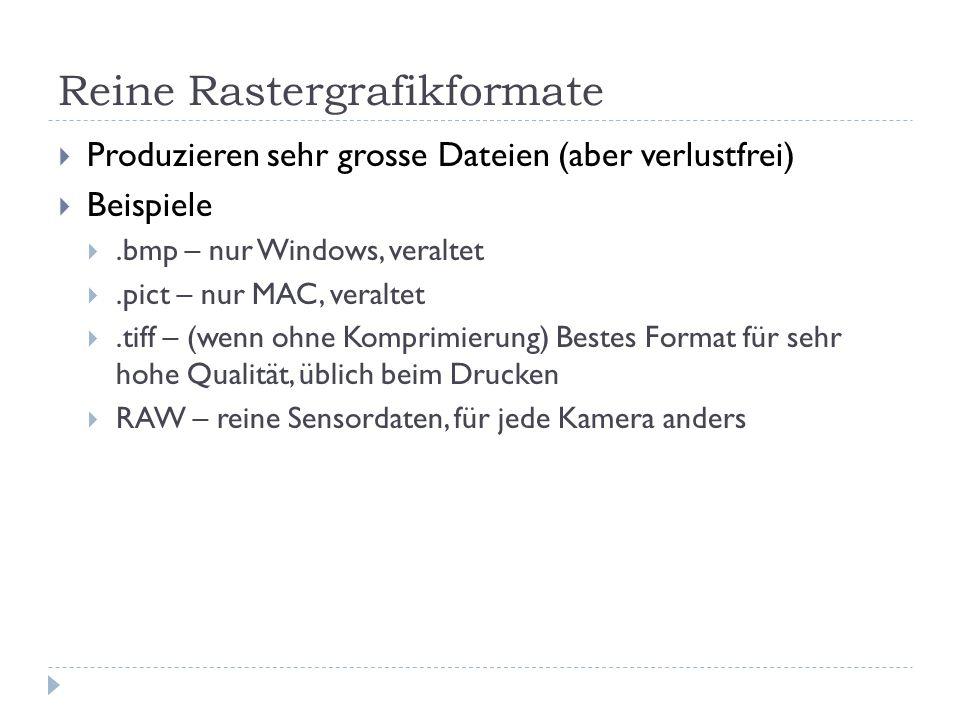 Reine Rastergrafikformate Produzieren sehr grosse Dateien (aber verlustfrei) Beispiele.bmp – nur Windows, veraltet.pict – nur MAC, veraltet.tiff – (wenn ohne Komprimierung) Bestes Format für sehr hohe Qualität, üblich beim Drucken RAW – reine Sensordaten, für jede Kamera anders