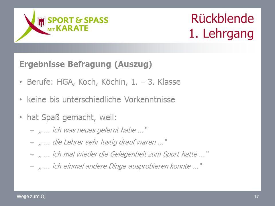 Rückblende 1.Lehrgang Ergebnisse Befragung (Auszug) Berufe: HGA, Koch, Köchin, 1.