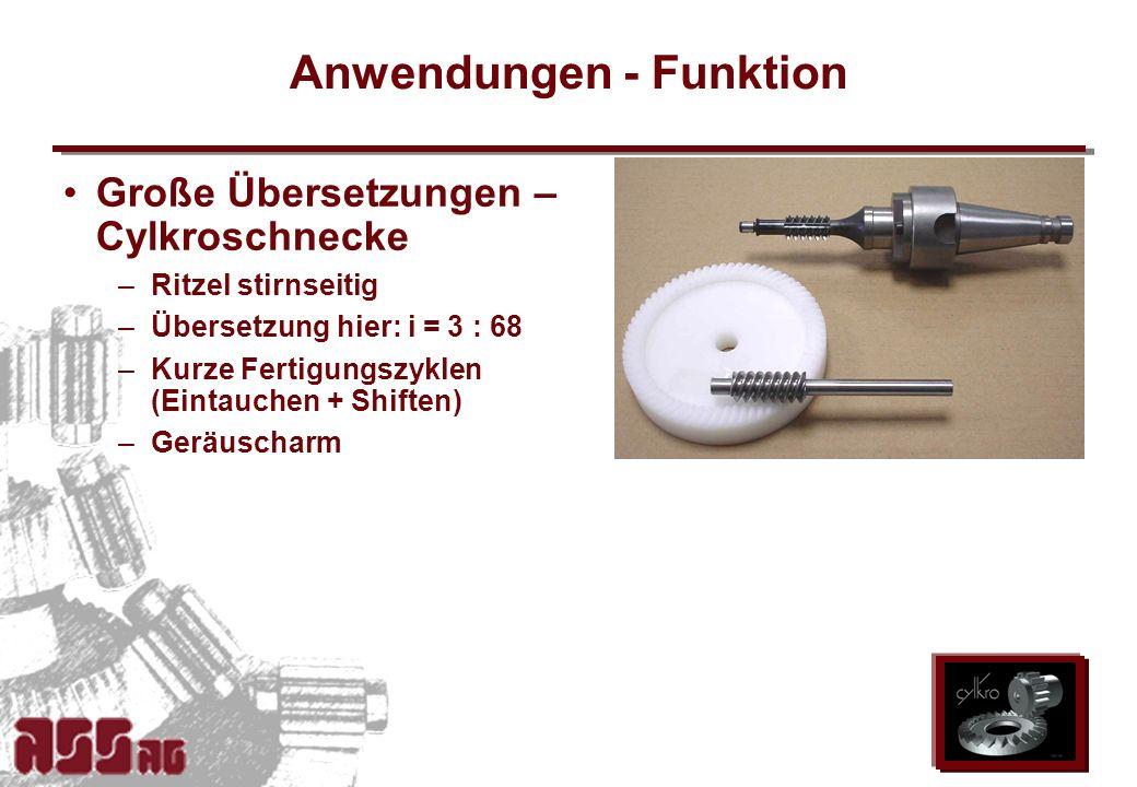 ASS AG 2002 Anwendungen - Funktion Große Übersetzungen – Cylkroschnecke –Ritzel stirnseitig –Übersetzung hier: i = 3 : 68 –Kurze Fertigungszyklen (Ein