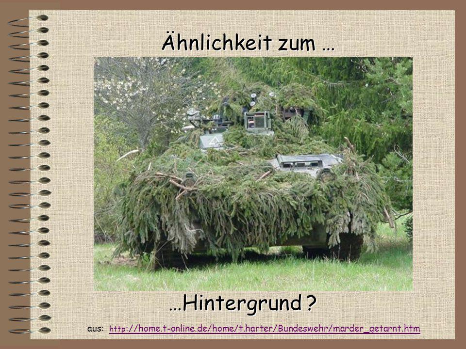 Ähnlichkeit zum … …Hintergrund ? aus: http ://home.t-online.de/home/t.harter/Bundeswehr/marder_getarnt.htm http ://home.t-online.de/home/t.harter/Bund