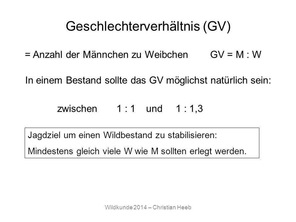 Wildkunde 2014 – Christian Heeb Geschlechterverhältnis (GV) In einem Bestand sollte das GV möglichst natürlich sein: zwischen1 : 1 und1 : 1,3 Jagdziel