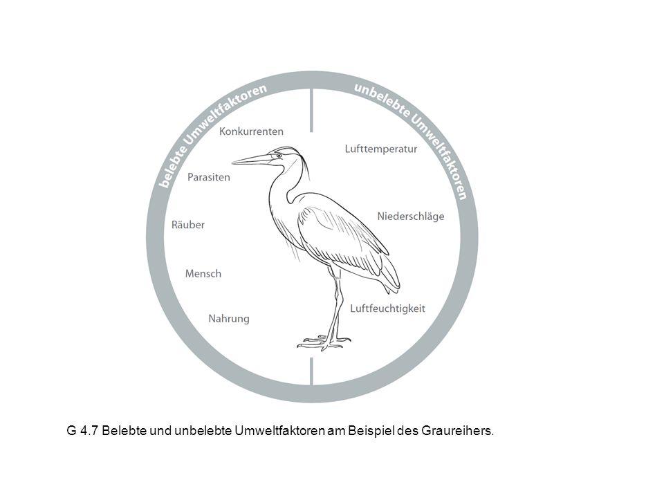 Wildkunde 2014 – Christian Heeb Bestand und Bejagung Minimal bekannter Gämsbestand im Kt.
