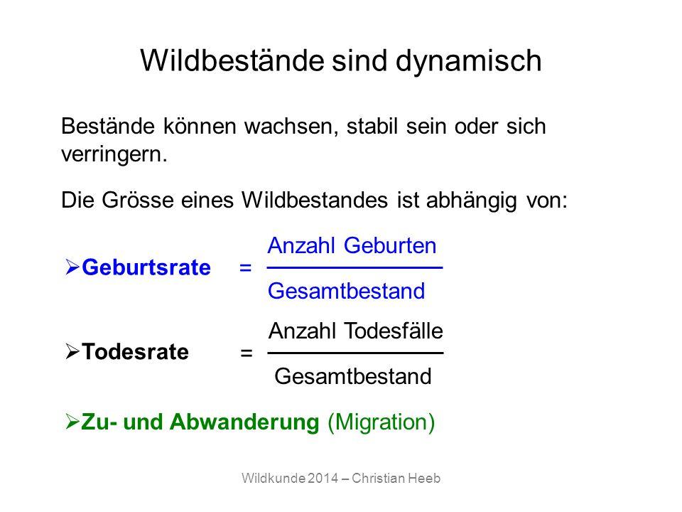 Wildkunde 2014 – Christian Heeb Wildbestände sind dynamisch Die Grösse eines Wildbestandes ist abhängig von: Geburtsrate Todesrate Zu- und Abwanderung