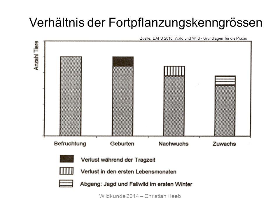 Wildkunde 2014 – Christian Heeb Verhältnis der Fortpflanzungskenngrössen Quelle: BAFU 2010: Wald und Wild - Grundlagen für die Praxis