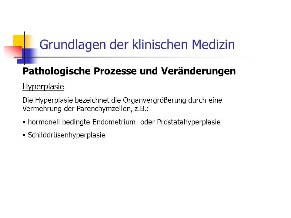 Pathologische Prozesse und Veränderungen Hyperplasie Die Hyperplasie bezeichnet die Organvergrößerung durch eine Vermehrung der Parenchymzellen, z.B.: hormonell bedingte Endometrium- oder Prostatahyperplasie Schilddrüsenhyperplasie