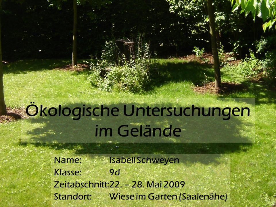 Ökologische Untersuchungen im Gelände Name: Isabell Schweyen Klasse: 9d Zeitabschnitt:22. – 28. Mai 2009 Standort: Wiese im Garten (Saalenähe)