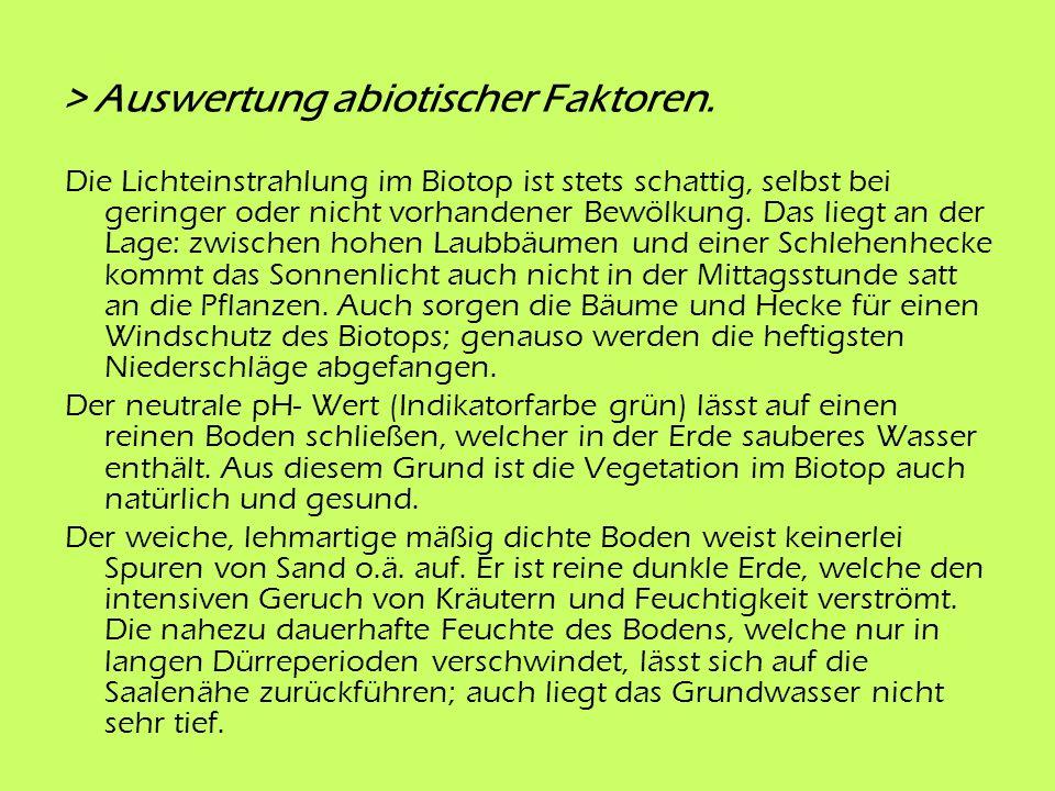 3 Analyse biotischer Faktoren > 3.1 Pflanzen.