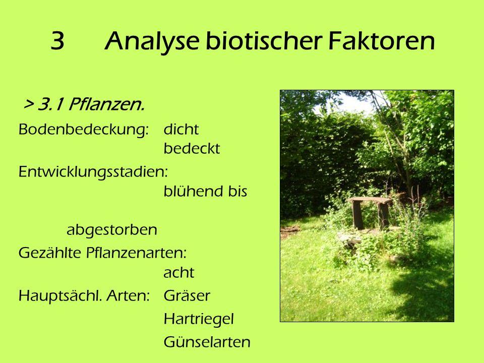 3 Analyse biotischer Faktoren > 3.1 Pflanzen. Bodenbedeckung:dicht bedeckt Entwicklungsstadien: blühend bis abgestorben Gezählte Pflanzenarten: acht H