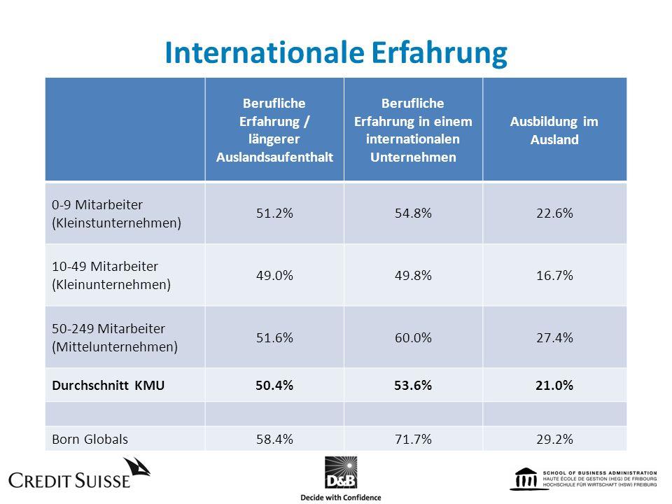 Internationale Erfahrung Berufliche Erfahrung / längerer Auslandsaufenthalt Berufliche Erfahrung in einem internationalen Unternehmen Ausbildung im Au