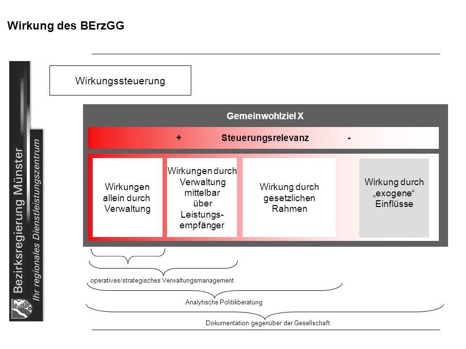 Wirkung des BErzGG Wirkungssteuerung operatives/strategisches Verwaltungsmanagement Analytische Politikberatung Dokumentation gegenüber der Gesellscha