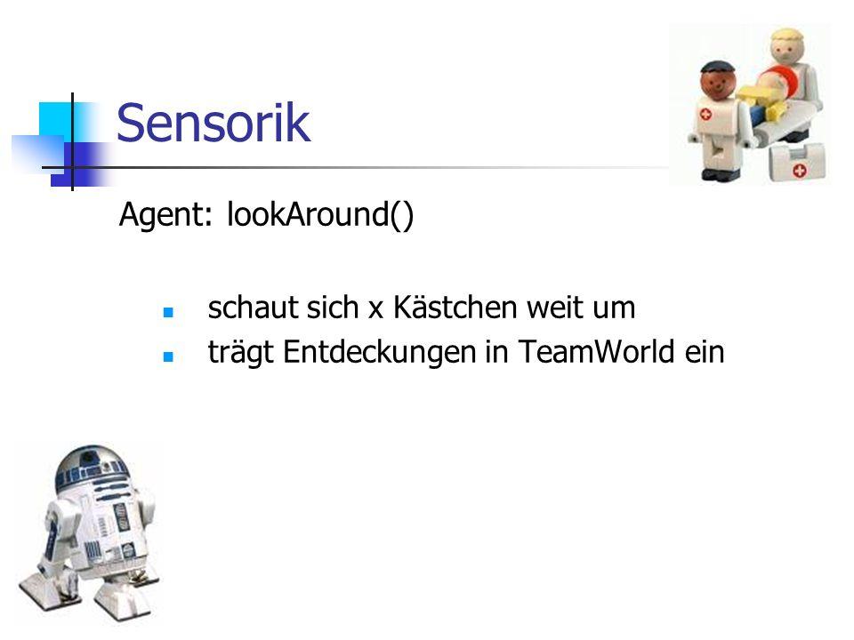 Sensorik Agent: lookAround() schaut sich x Kästchen weit um trägt Entdeckungen in TeamWorld ein
