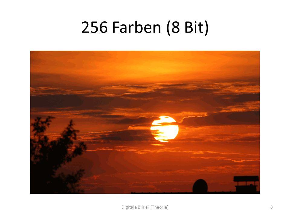 IV LAB Farbraum mit drei Dimensionen (X, Y, Z) Zwei Achsen für Farben (X, Y als a und b), eine Achse für Helligkeit (Z als L (luminance)) Ebene der Achsen a und b, jeweils von -127 bis + 128 = wieder 256 Abstufungen Farben nach Gegenfarbenprinzip (physikalische Theorie) geordnet – a = von Grün (negativ) bis Rot (positiv) – b = von Blau (negativ) bis Gelb (positiv) – Also vier Grundfarben und Mischungen, Übergänge – Achse L von 0 (Schwarz) bis 100 (Weiß) 39Digitale Bilder (Theorie)
