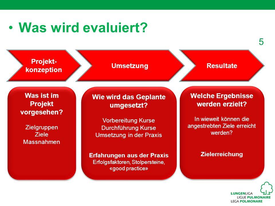 5 Was wird evaluiert? Was ist im Projekt vorgesehen? Zielgruppen Ziele Massnahmen Was ist im Projekt vorgesehen? Zielgruppen Ziele Massnahmen Wie wird