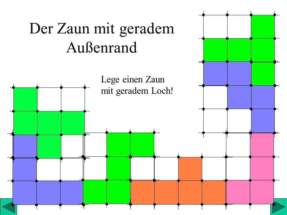 Horst Steibl9 Der Zaun mit geradem Außenrand Lege einen Zaun mit geradem Loch!