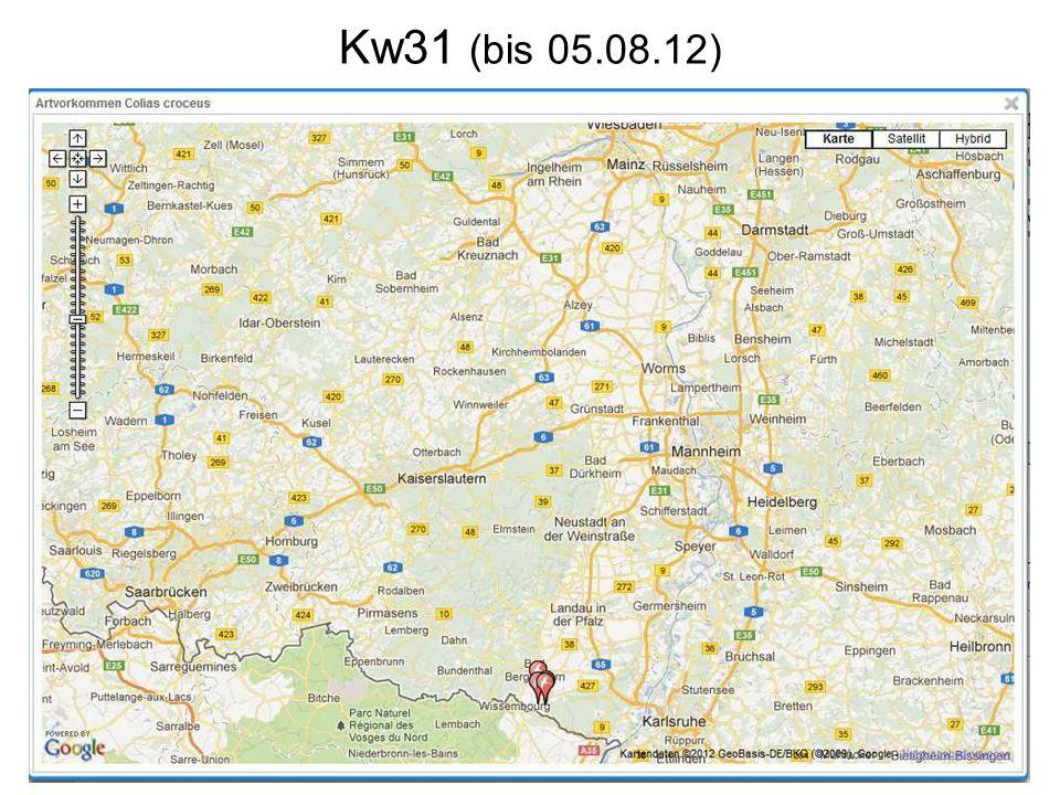Kw31 (bis 05.08.12)