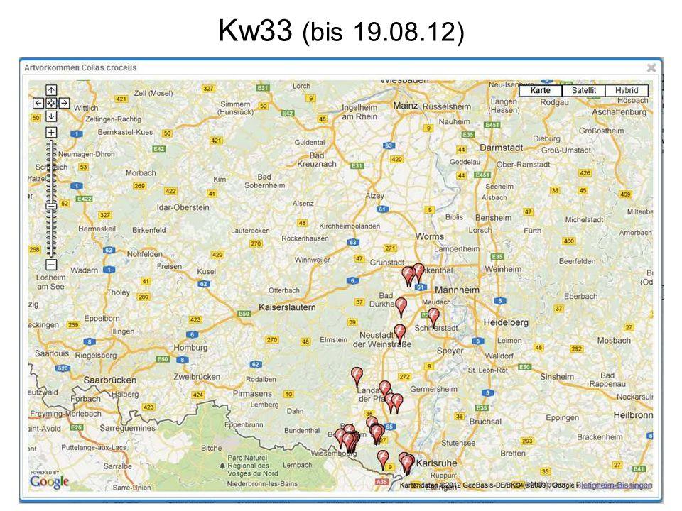 Kw33 (bis 19.08.12)