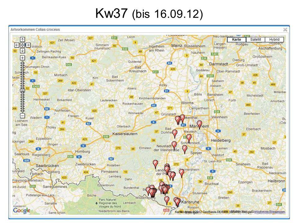 Kw37 (bis 16.09.12)