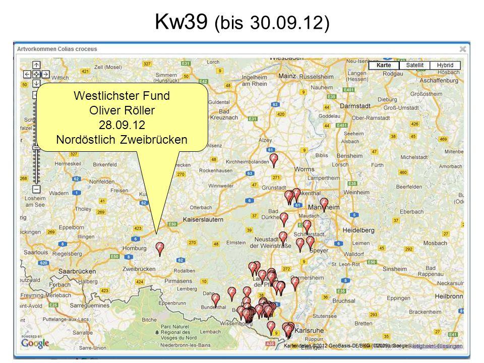 Kw39 (bis 30.09.12) Westlichster Fund Oliver Röller 28.09.12 Nordöstlich Zweibrücken
