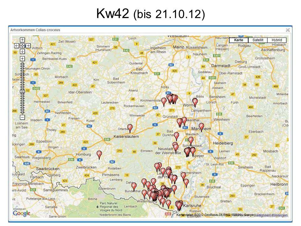 Kw42 (bis 21.10.12)