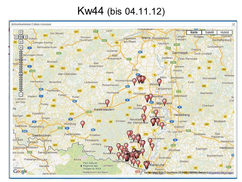 Kw44 (bis 04.11.12)