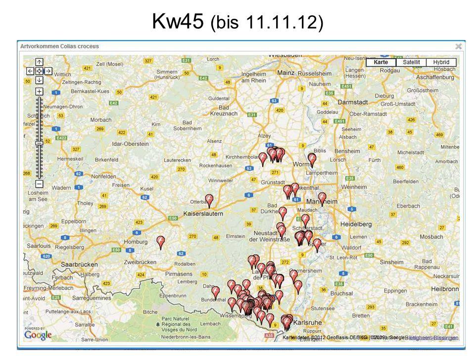 Kw45 (bis 11.11.12)