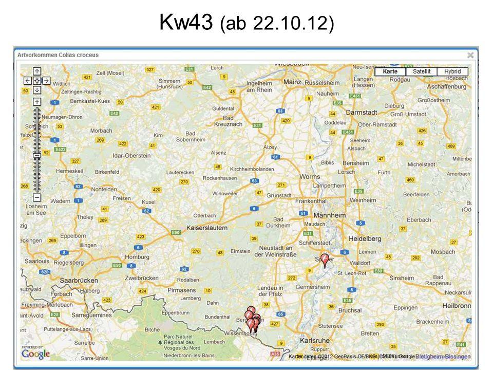 Kw43 (ab 22.10.12)