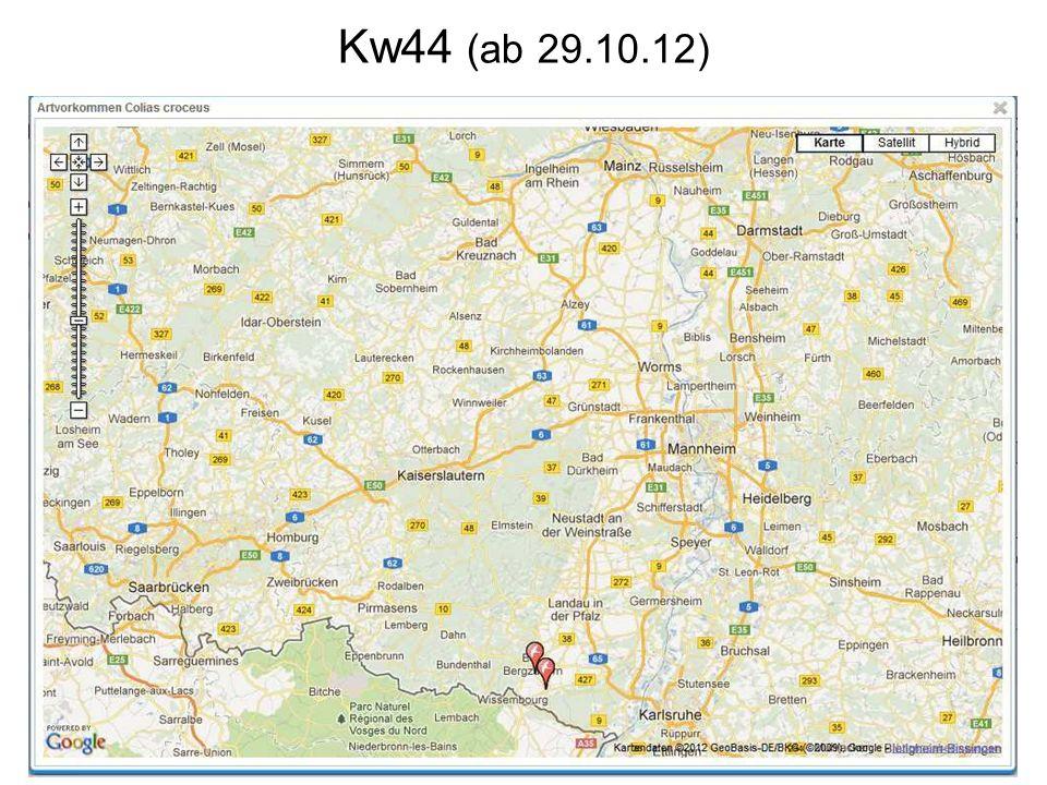 Kw44 (ab 29.10.12)
