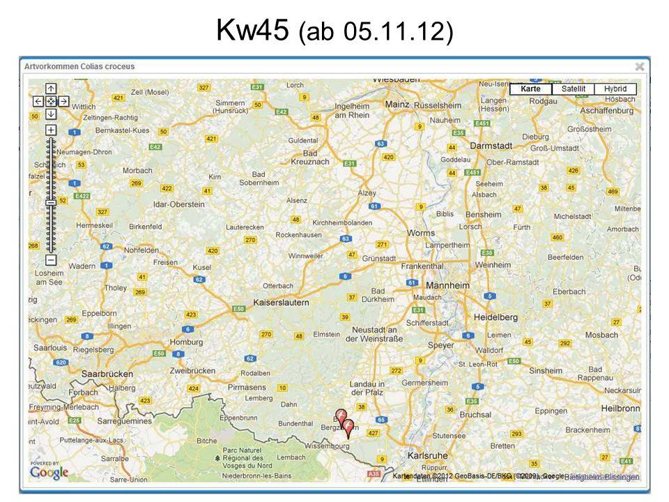 Kw45 (ab 05.11.12)