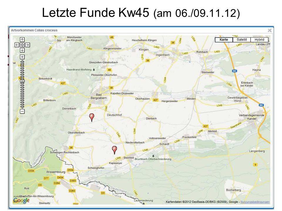 Letzte Funde Kw45 (am 06./09.11.12)