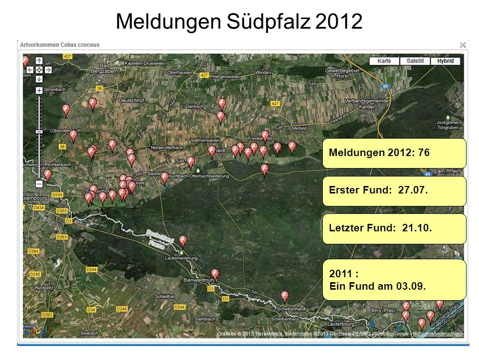Meldungen Südpfalz 2012 Meldungen 2012: 76 Erster Fund: 27.07. 2011 : Ein Fund am 03.09. Letzter Fund: 21.10.