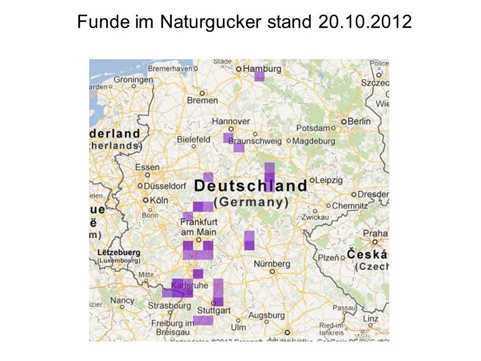 Funde im Naturgucker stand 20.10.2012