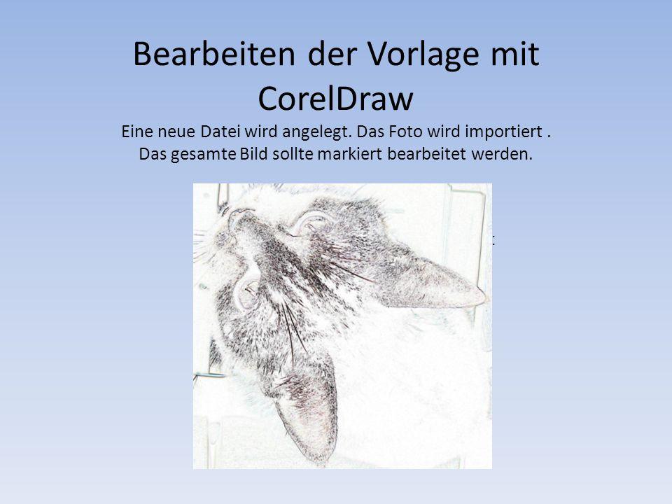 Bearbeiten der Vorlage mit CorelDraw Eine neue Datei wird angelegt. Das Foto wird importiert. Das gesamte Bild sollte markiert bearbeitet werden. Wähl