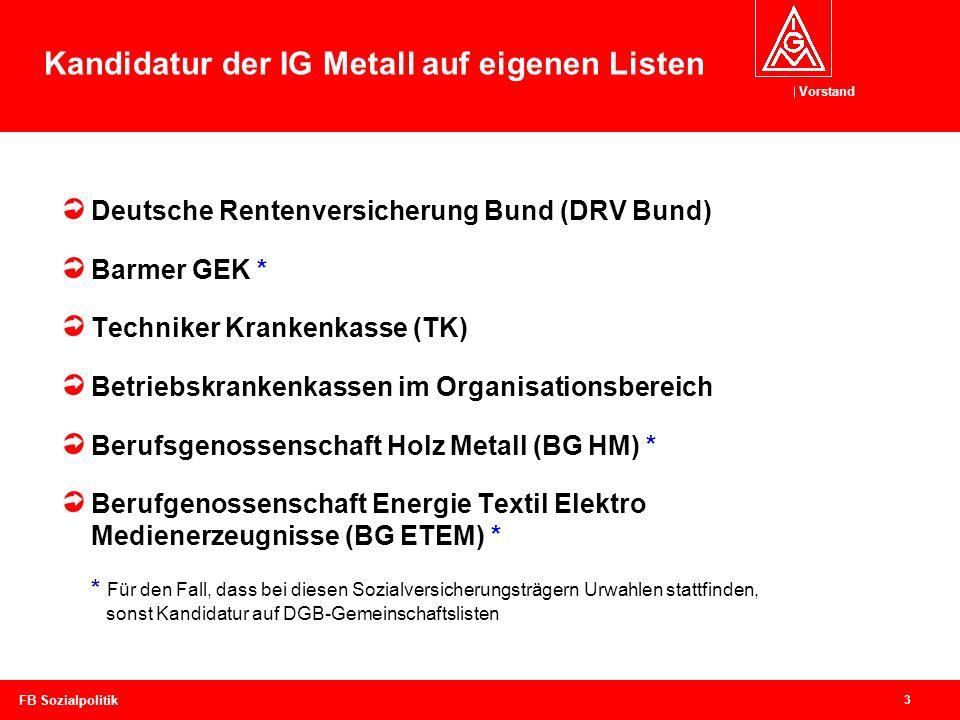 Vorstand 3 FB Sozialpolitik Deutsche Rentenversicherung Bund (DRV Bund) Barmer GEK * Techniker Krankenkasse (TK) Betriebskrankenkassen im Organisation