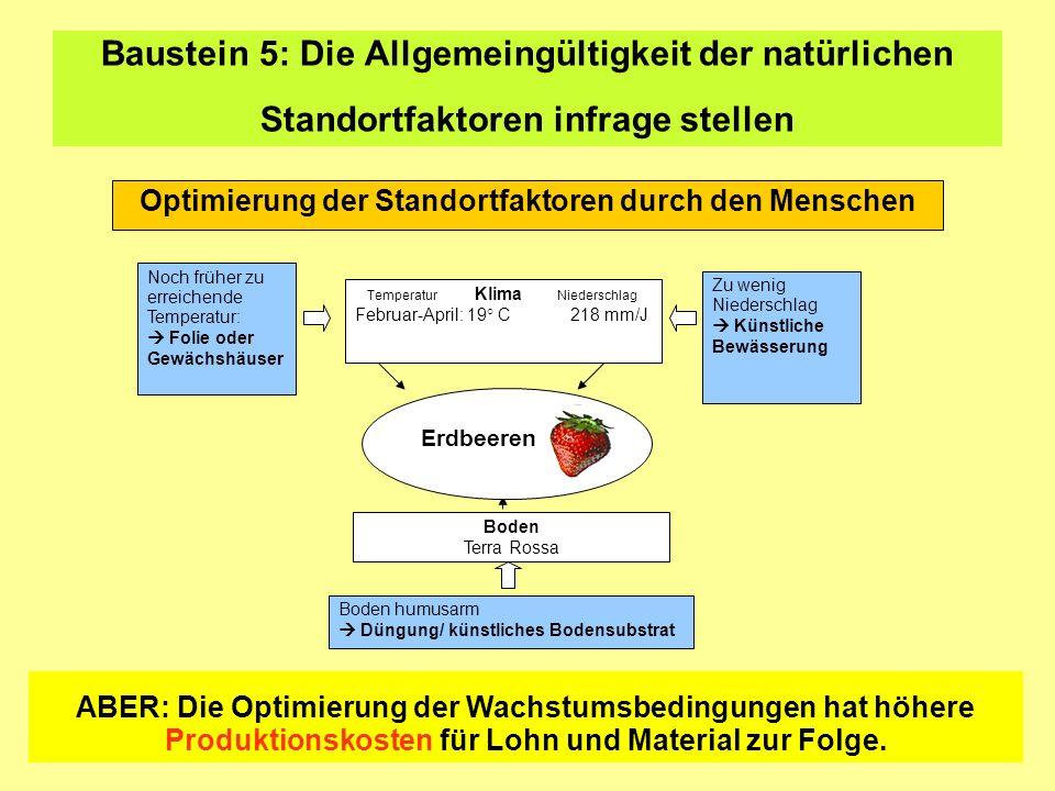 Baustein 5: Die Allgemeingültigkeit der natürlichen Standortfaktoren infrage stellen Optimierung der Standortfaktoren durch den Menschen Noch früher z