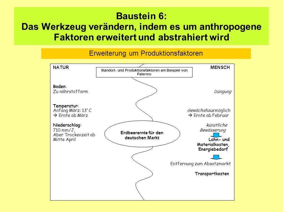 Baustein 6: Das Werkzeug verändern, indem es um anthropogene Faktoren erweitert und abstrahiert wird NATUR MENSCH Boden: Zu nährstoffarm Düngung Tempe