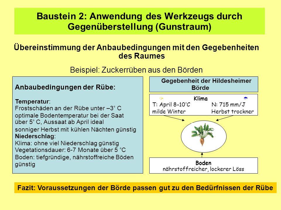 Baustein 2: Anwendung des Werkzeugs durch Gegenüberstellung (Gunstraum) Übereinstimmung der Anbaubedingungen mit den Gegebenheiten des Raumes Beispiel