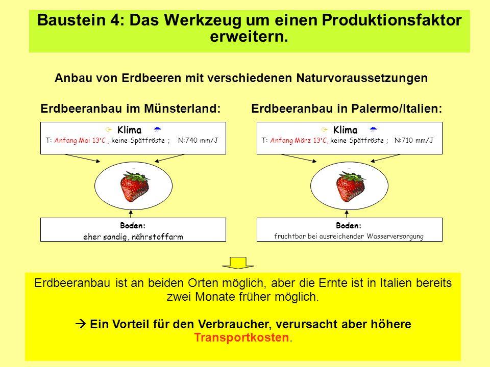 Baustein 4: Das Werkzeug um einen Produktionsfaktor erweitern. Anbau von Erdbeeren mit verschiedenen Naturvoraussetzungen Erdbeeranbau im Münsterland: