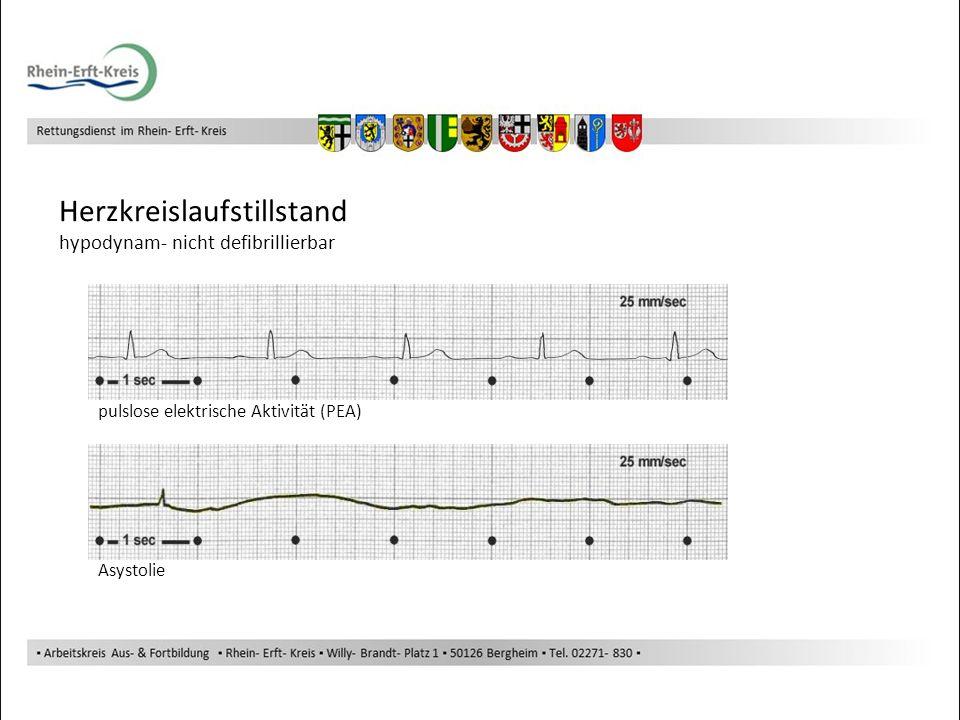 Herzkreislaufstillstand hypodynam- nicht defibrillierbar pulslose elektrische Aktivität (PEA) Asystolie