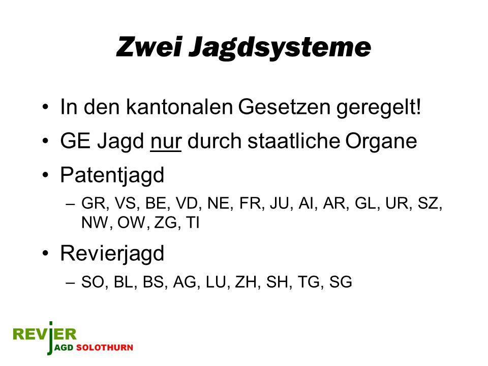 Zwei Jagdsysteme In den kantonalen Gesetzen geregelt! GE Jagd nur durch staatliche Organe Patentjagd –GR, VS, BE, VD, NE, FR, JU, AI, AR, GL, UR, SZ,