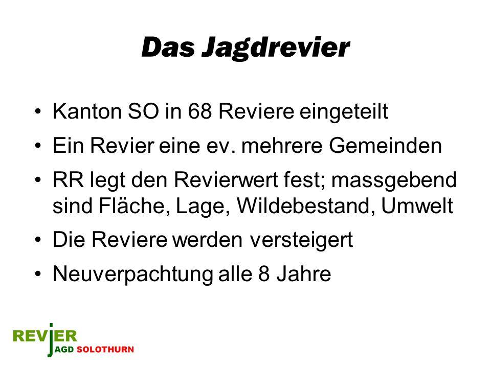 Das Jagdrevier Kanton SO in 68 Reviere eingeteilt Ein Revier eine ev. mehrere Gemeinden RR legt den Revierwert fest; massgebend sind Fläche, Lage, Wil
