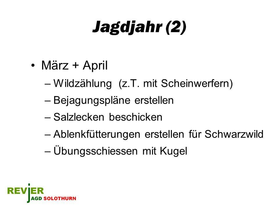 Jagdjahr (2) März + April –Wildzählung (z.T. mit Scheinwerfern) –Bejagungspläne erstellen –Salzlecken beschicken –Ablenkfütterungen erstellen für Schw