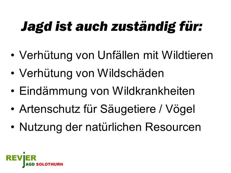 Jagd ist auch zuständig für: Verhütung von Unfällen mit Wildtieren Verhütung von Wildschäden Eindämmung von Wildkrankheiten Artenschutz für Säugetiere