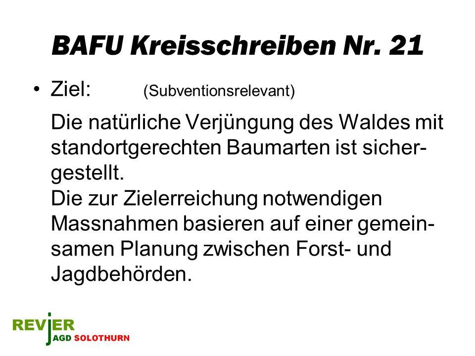 BAFU Kreisschreiben Nr. 21 Ziel: (Subventionsrelevant) Die natürliche Verjüngung des Waldes mit standortgerechten Baumarten ist sicher- gestellt. Die