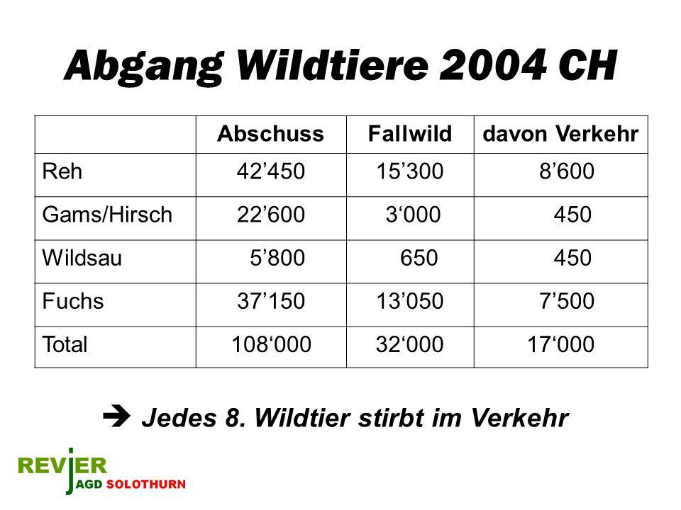 Abgang Wildtiere 2004 CH AbschussFallwilddavon Verkehr Reh4245015300 8600 Gams/Hirsch22600 3000 450 Wildsau 5800 650 450 Fuchs3715013050 7500 Total108