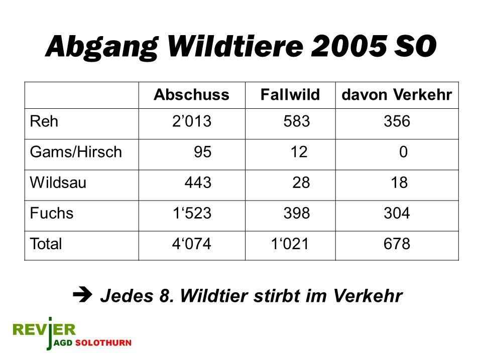 Abgang Wildtiere 2005 SO AbschussFallwilddavon Verkehr Reh2013 583356 Gams/Hirsch 95 12 0 Wildsau 443 28 18 Fuchs1523 398304 Total40741021678 Jedes 8.