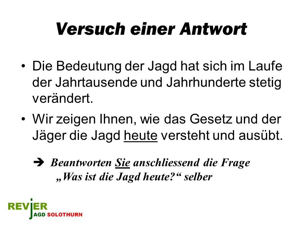 Jagdjahr (1) Januar + Februar –Spuren / Fährten beobachten im Schnee –Fuchsjagd –Ansitz auf Wildschwein –Wild beobachten (beso.