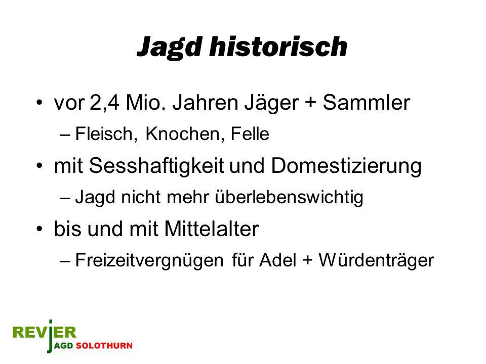 Jagd ein Kulturgut Jagdmusik / Jagdkunst / Jagdliteratur Brauchtum (so alt wie die Jagd selber) –Jägersprache –Jagdsignale –Bruchzeichen –Verhalten auf der Jagd –Zeremonien wie z.B.