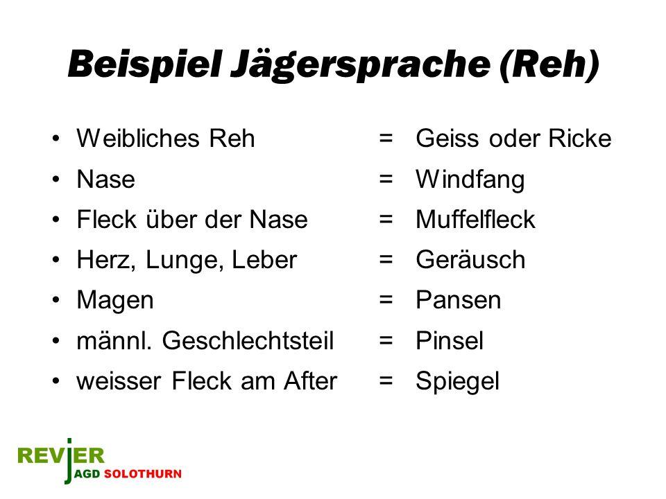 Bund: Jagdgesetz 20.