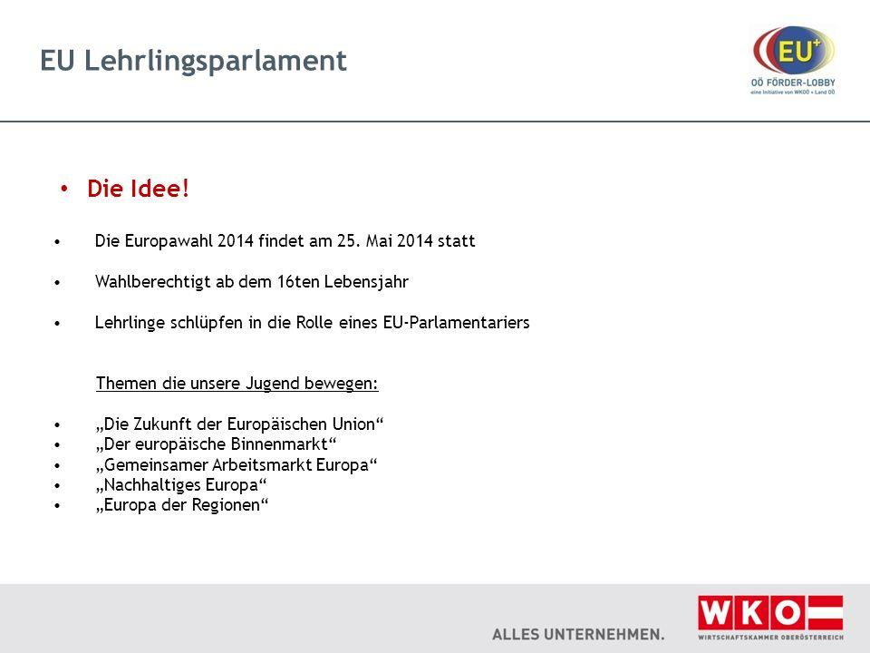 EU Lehrlingsparlament Die Idee! Die Europawahl 2014 findet am 25. Mai 2014 statt Wahlberechtigt ab dem 16ten Lebensjahr Lehrlinge schlüpfen in die Rol